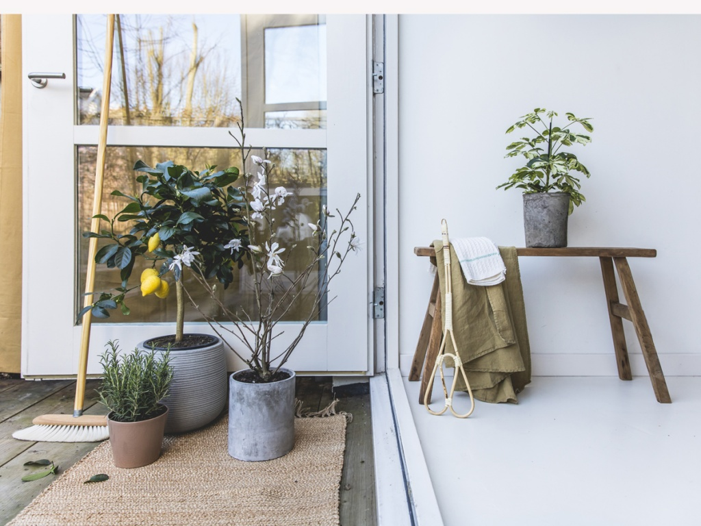 5 einfache schritte f r den fr hjahrsputz im garten pflanzenfreude. Black Bedroom Furniture Sets. Home Design Ideas