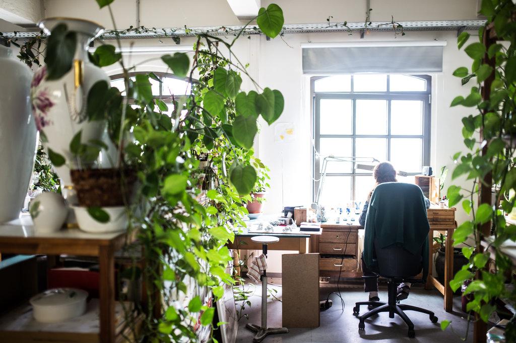 pflanzen am arbeitsplatz zur inspiration und luftreinigung pflanzenfreude. Black Bedroom Furniture Sets. Home Design Ideas