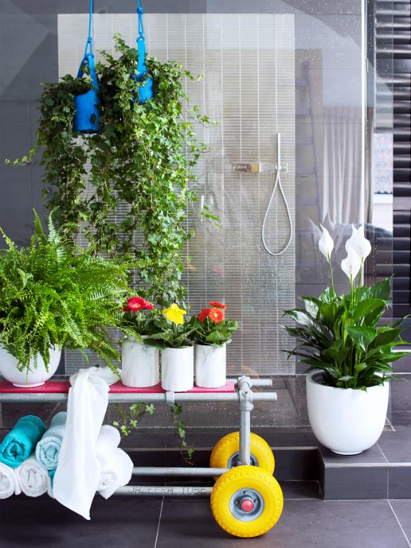 Ein eigenes spa durch pflanzen im badezimmer pflanzenfreude - Badezimmer mit pflanzen ...