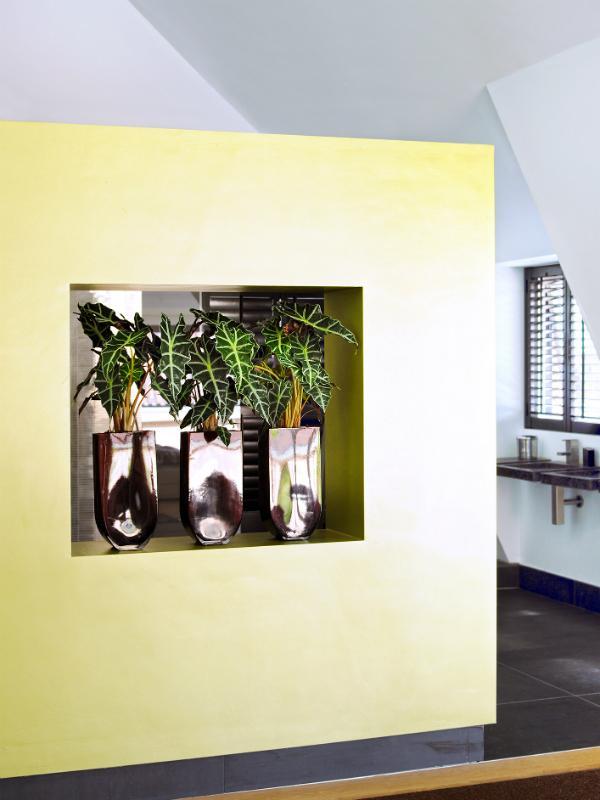 Interieur-Trend: Stellen Sie Ihre Pflanzen ab sofort in die Wand ...