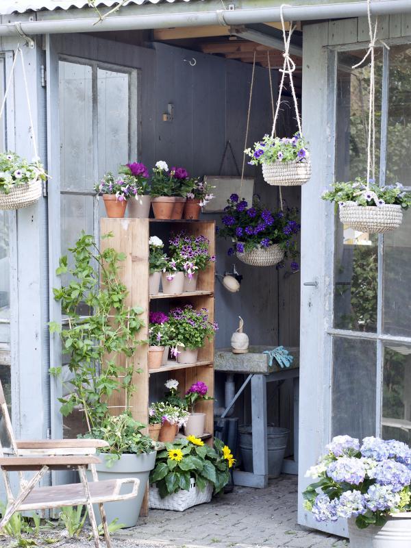 sommer trend 2015 die neue wildnis pflanzenfreude. Black Bedroom Furniture Sets. Home Design Ideas
